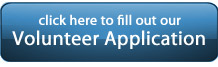 volunteer-application-button